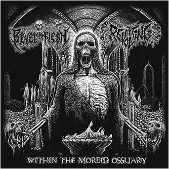 revel in flesh / revolting - within the morbid ossuary split ep
