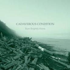 cadaverous condition -  burn brightly alone