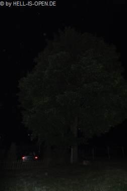 Dieser Baum hatte es einigen betrunkenen Mitstreitern angetan. Komisch, am nächsten Tag war es nur ein ganz normaler Baum ;-) 2:37Uhr