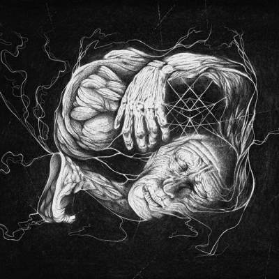 verberis - vorant gnosis