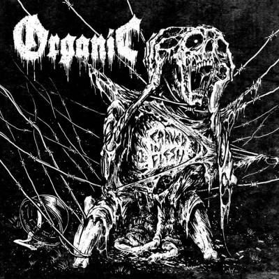 Review: Organic - Carved in Flesh :: Klicken zum Anzeigen...