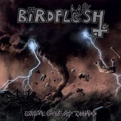 Review: Birdflesh - Extreme Graveyard Tornado :: Genre: Grindcore