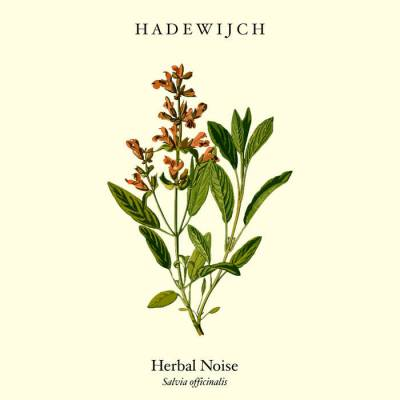 Review: Hadewijch - Herbal Noise :: Genre: Doom Metal